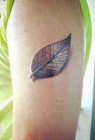 植物纹身 男生大臂上黑色的叶子纹身图片