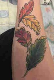 植物纹身 男生手臂上彩色的叶子纹身图片
