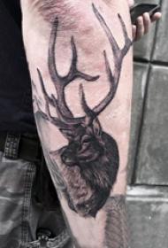 麋鹿角纹身 多款黑灰纹身点刺技巧麋鹿角纹身图案