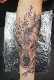 狼纹身 女生手臂上狼头纹身图片