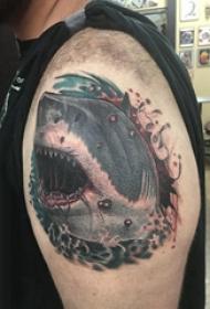 大臂纹身图 男生大臂上彩色的鲨鱼纹身图片