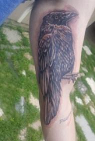 手臂纹身素材 男生手臂上黑色的乌鸦纹身图片