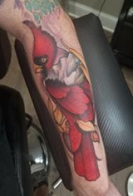 鸟纹身 男生手臂上鸟纹身图片