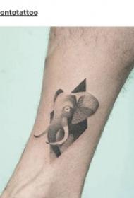百樂動物紋身 男生小腿上菱形和大象紋身圖片
