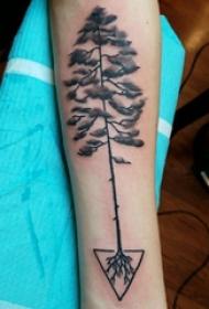 手臂纹身图片 男生手臂上三角形和树纹身图片
