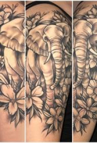 大象纹身 女生大臂上花朵和大象纹身图片