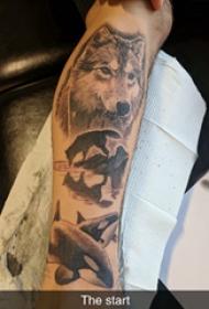 百乐动物纹身 男生手臂上狼头和鲸鱼纹身图片