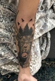 手臂纹身图片 女生手臂上植物和麋鹿纹身图片