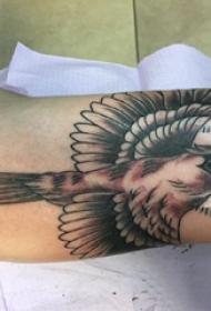 纹身鸟  男生大臂上黑灰的鸟纹身图片