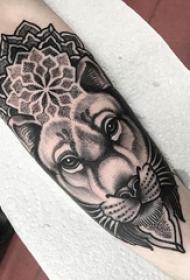 手臂纹身图片 男生手臂上梵花和狮子纹身图片