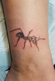 小动物纹身 男生小腿上黑色的蚂蚁纹身图片