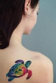 乌龟纹身图案 多款彩色渐变纹身素描乌龟纹身图案