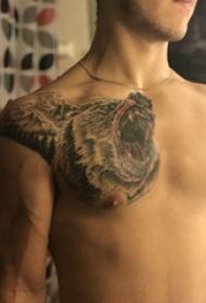 熊紋身 男生胸部熊紋身圖片