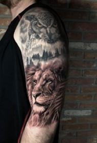 手臂纹身图片 男生手臂上猫头鹰和狮子纹身图片