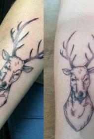 小动物纹身 情侣手臂上黑色的麋鹿纹身图片