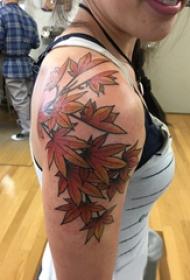 楓葉紋身圖 女生手臂上楓葉紋身圖片