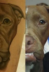 小狗纹身图案 男生小腿上黑色的小狗纹身图片