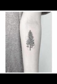 松树纹身  女生手臂上黑色的松树纹身图片