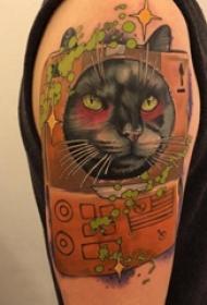 小猫咪纹身 男生手臂上猫纹身图片