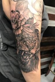 唐狮子纹身 男生手臂上唐狮子纹身图案