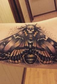 小动物纹身 女生手臂上骷髅和飞蛾纹身图片