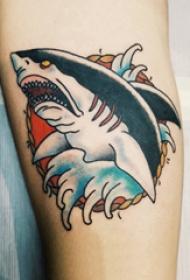 小动物纹身 男生手臂上彩色的鲨鱼纹身图片