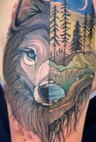欧美拼接纹身 男生大臂上风景和狼头拼接纹身图片