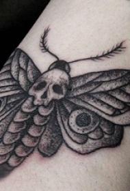 纹身手臂内侧女  女生手臂上骷髅和飞蛾纹身图片