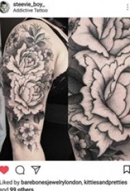 纹身图案花朵  女生手臂上创意的花朵纹身图片