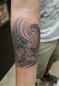 猫头鹰纹身图 男生手臂上灰色的猫头鹰纹身图片