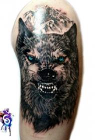滴血狼头纹身 男生大臂上彩色的狼头纹身图片