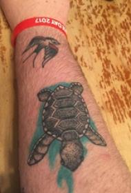 乌龟纹身图案  男生手臂上彩绘的乌龟纹身图片