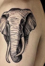 大臂纹身图 男生大臂上温顺的大象纹身图片