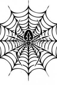 蜘蛛网纹身手稿 规矩的蜘蛛和蜘蛛网纹身手稿