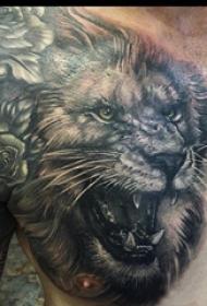 狮子王纹身  男生胸上素描的狮子纹身图片