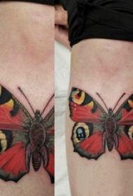 小植物纹身 男生小腿上黑色的胡蝶纹身图片