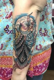 纹身猫头鹰  女生手臂上彩绘的猫头鹰纹身图片