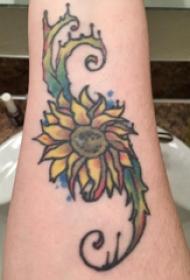 纹身图案花朵 男生手臂上彩色的植物纹身图片
