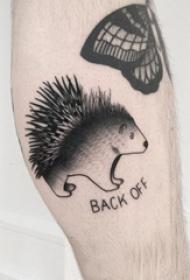 刺猬纹身图案 男生小腿上英文和刺猬纹身图片