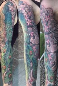 孔雀纹身图片 女生手臂上彩色的孔雀纹身图片