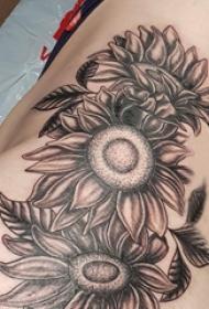 向日葵纹身图片 女生侧腰上黑色的向日葵纹身图片