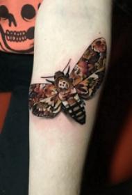 百乐动物纹身 女生手臂上彩色的飞蛾纹身图片