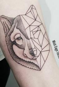 狼头纹身图片 女生手臂上黑色的拼接狼头纹身图片