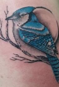 纹身鸟  男内行臂上鸟和树枝纹身图片