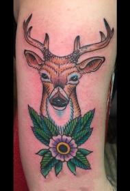 百乐植物纹身   活泼活泼的百乐植物纹身图案