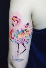 火烈鳥紋身圖_14張粉紅色的火烈鳥紋身圖案作品圖片