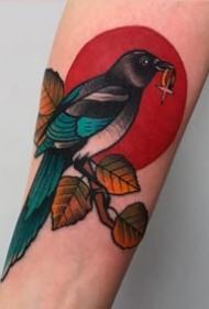 喜鵲紋身作品_10張鳥兒喜鵲紋身圖案作品刺青圖片