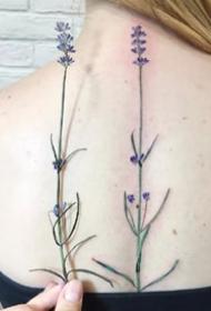 植物纹身图-一组把植物纹在身上的纹身图案作品