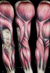 3d肌肉紋身--一組逼真效果的3d肌肉和心臟骨骼等紋身圖案