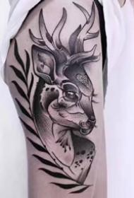 一組小鹿頭紋身作品圖片欣賞